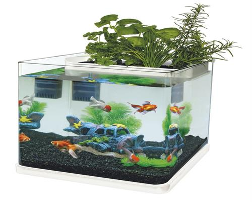 superfish aquaponics 23 aquarium set inkl filterm und led beleuchtung ebay. Black Bedroom Furniture Sets. Home Design Ideas