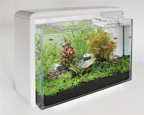 superfish home 40 60und 80ltr aquarium inkl filter und led beleuchtung ebay. Black Bedroom Furniture Sets. Home Design Ideas
