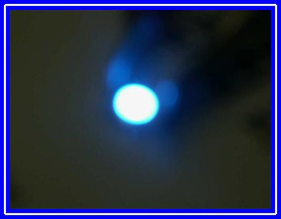blaue.JPG