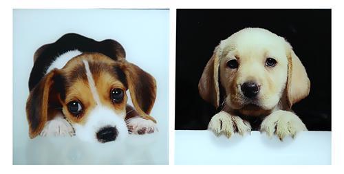 2er set glas bilder hunde labrador beagle s sse welpen wandbilder je 40cm x 40cm ebay. Black Bedroom Furniture Sets. Home Design Ideas