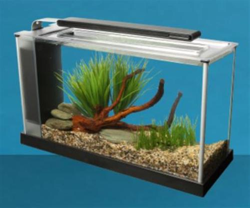 fluval nano aquarium spec 5 incl led beleuchtung umw lzpumpe und filter ebay. Black Bedroom Furniture Sets. Home Design Ideas