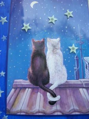 "Magnettafel ""Cats in Love"""