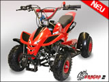 49cc DRAGON II MINI Quad | ATV