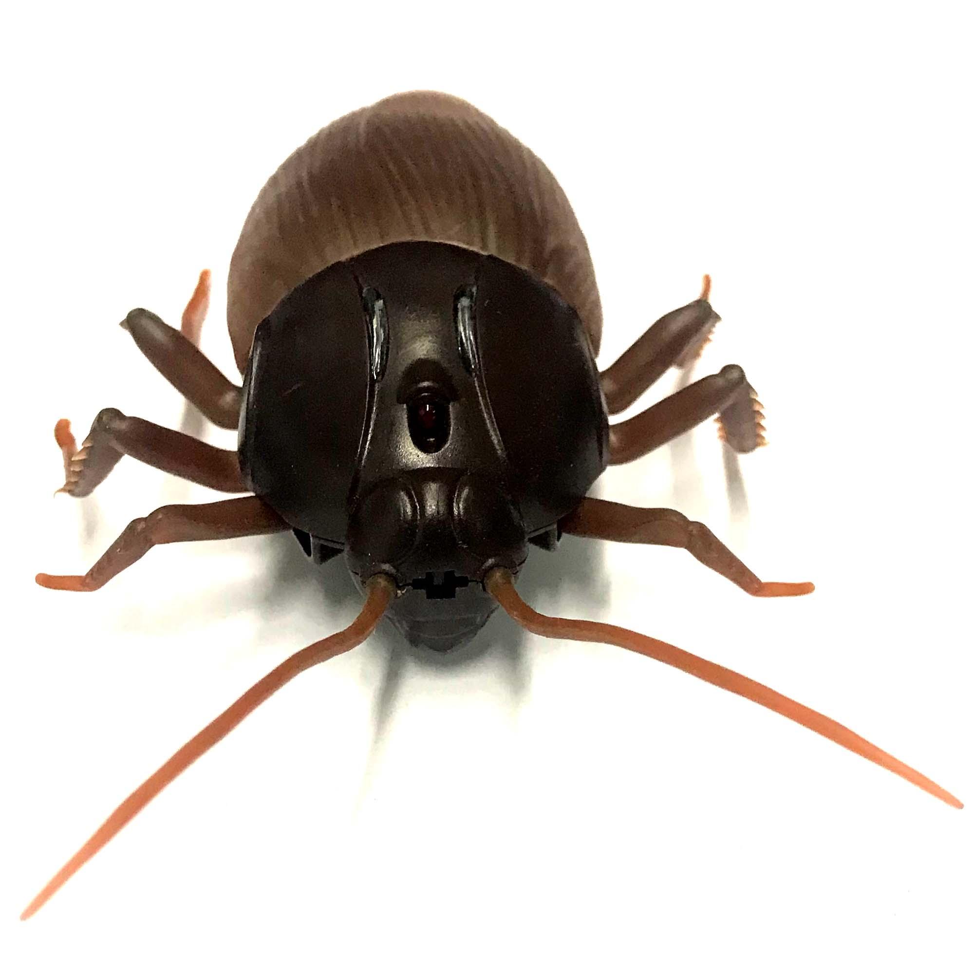 Infrarot Spielzeug Ferngesteuerte Riesen Kakerlake Tauschend Echt