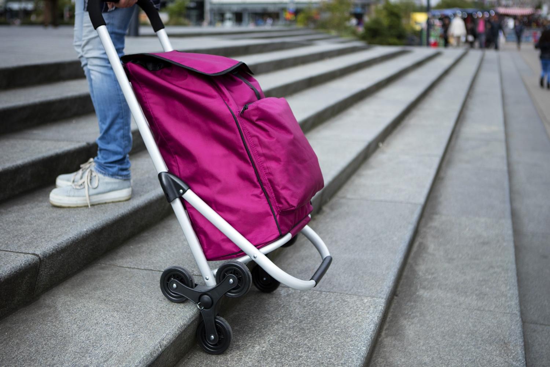 einkaufstrolley treppensteiger einkaufsroller trolley schwarz pink 30 liter ebay. Black Bedroom Furniture Sets. Home Design Ideas