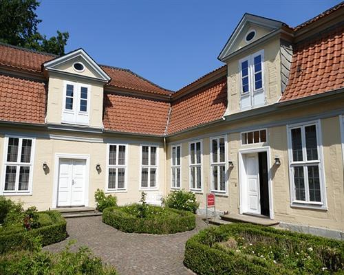buxus sempervirens 50 st ck buchsbaum 8 15 hecken buchs pflanzen 310012. Black Bedroom Furniture Sets. Home Design Ideas