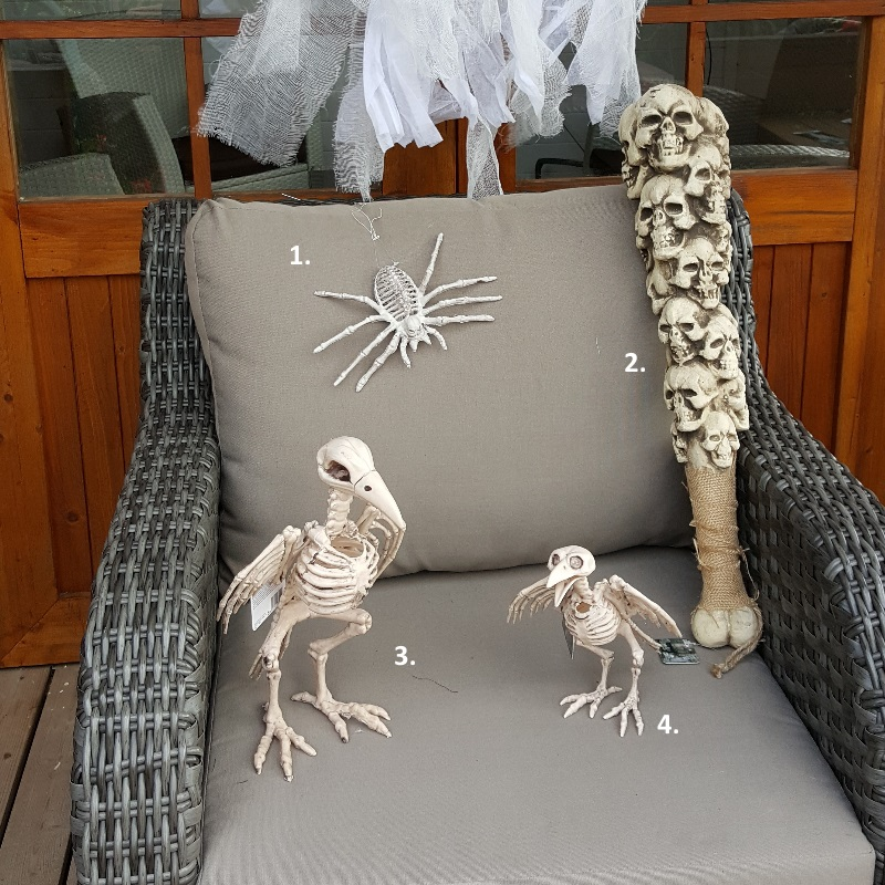 halloween deko figur vogel skelett spinnen skelett totenkopf keule tierskelett ebay. Black Bedroom Furniture Sets. Home Design Ideas