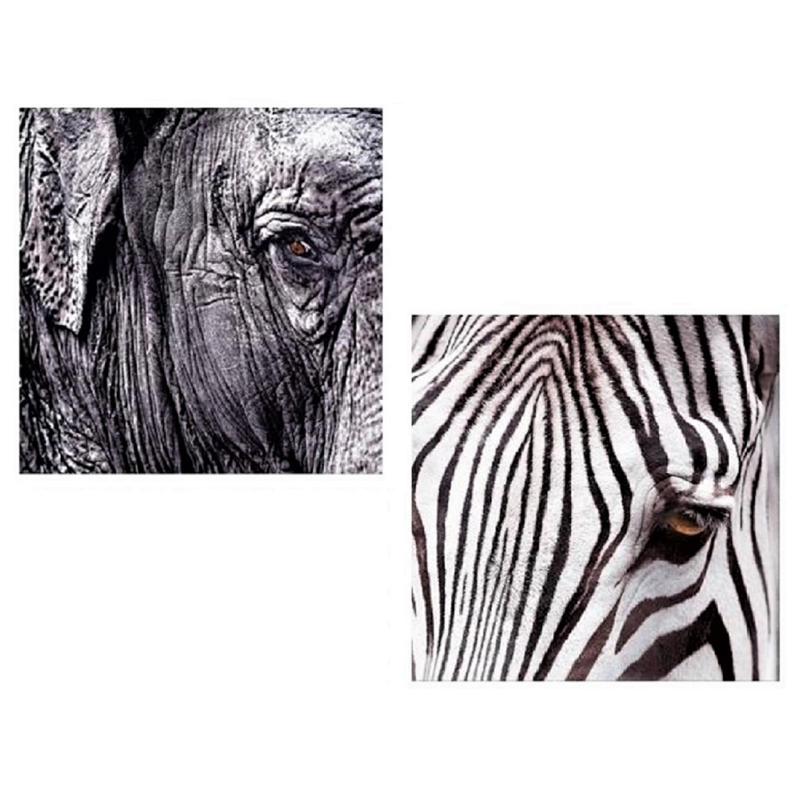 Wandbilder Elefant und Zebra