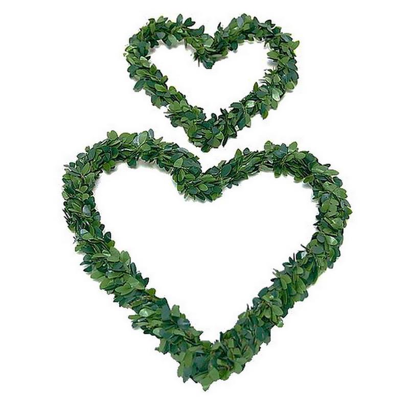 Mini - Buchs - Herz, grün / 2 Stück 10cm - 15cm !!!