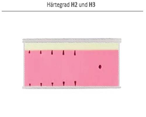 3_H2_H3.jpg