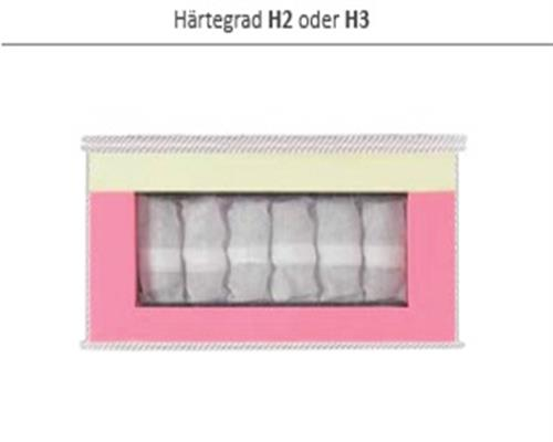 4_H2_H3.jpg