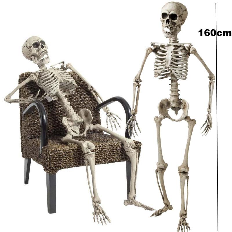deko skelett 160 cm party skelett beweglich grusel. Black Bedroom Furniture Sets. Home Design Ideas