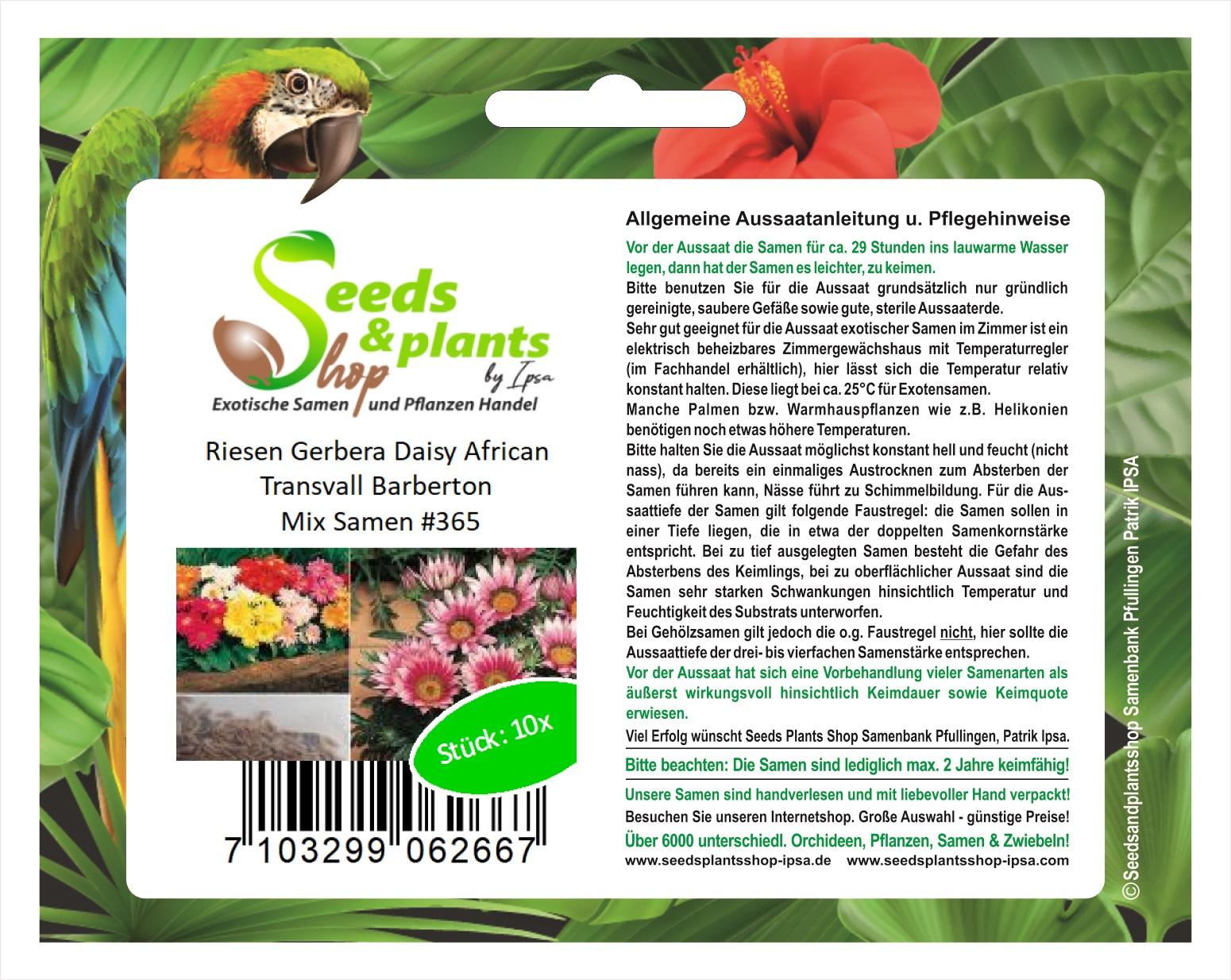 5000x Stroherröhre Wiesenblumen Mischung JÄHRLICH-Samen Garten Blume K367