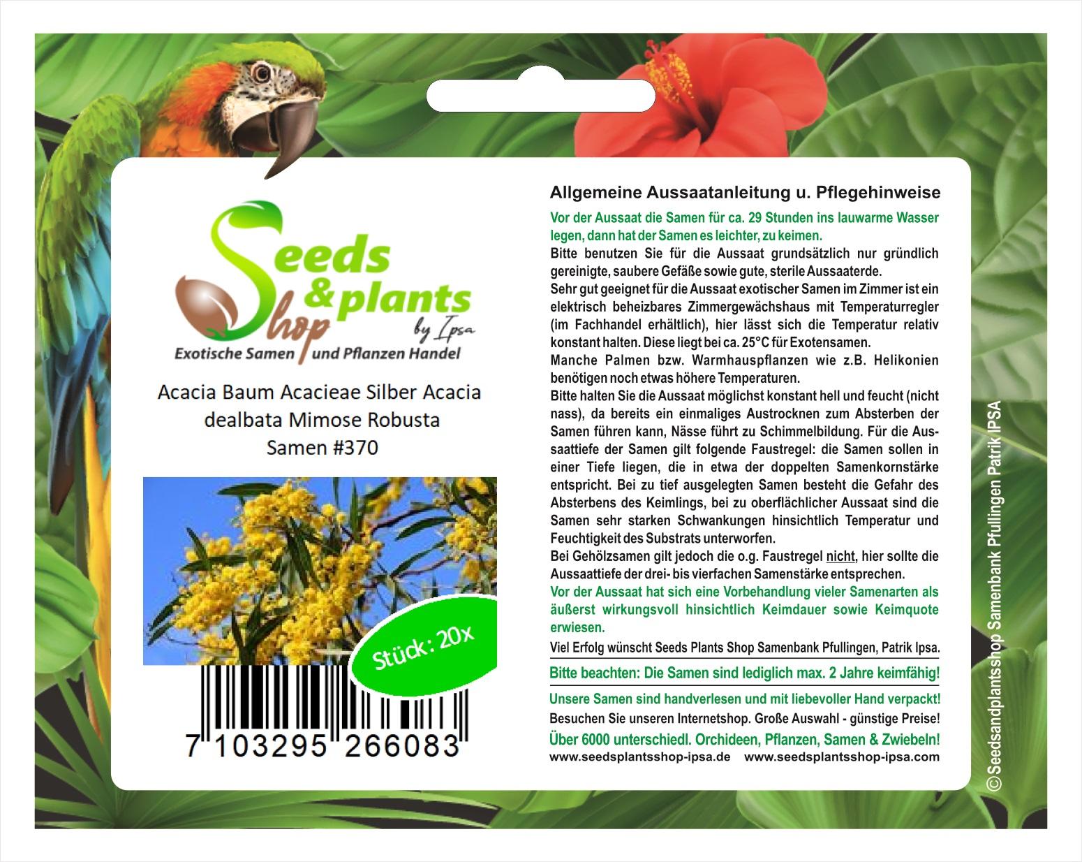 Seeds Plants Shop Samenbank Pfullingen Patrik Ipsa Stk 20x Acacia Acacieae Silber dealbata Mimose Robusta Samen #370