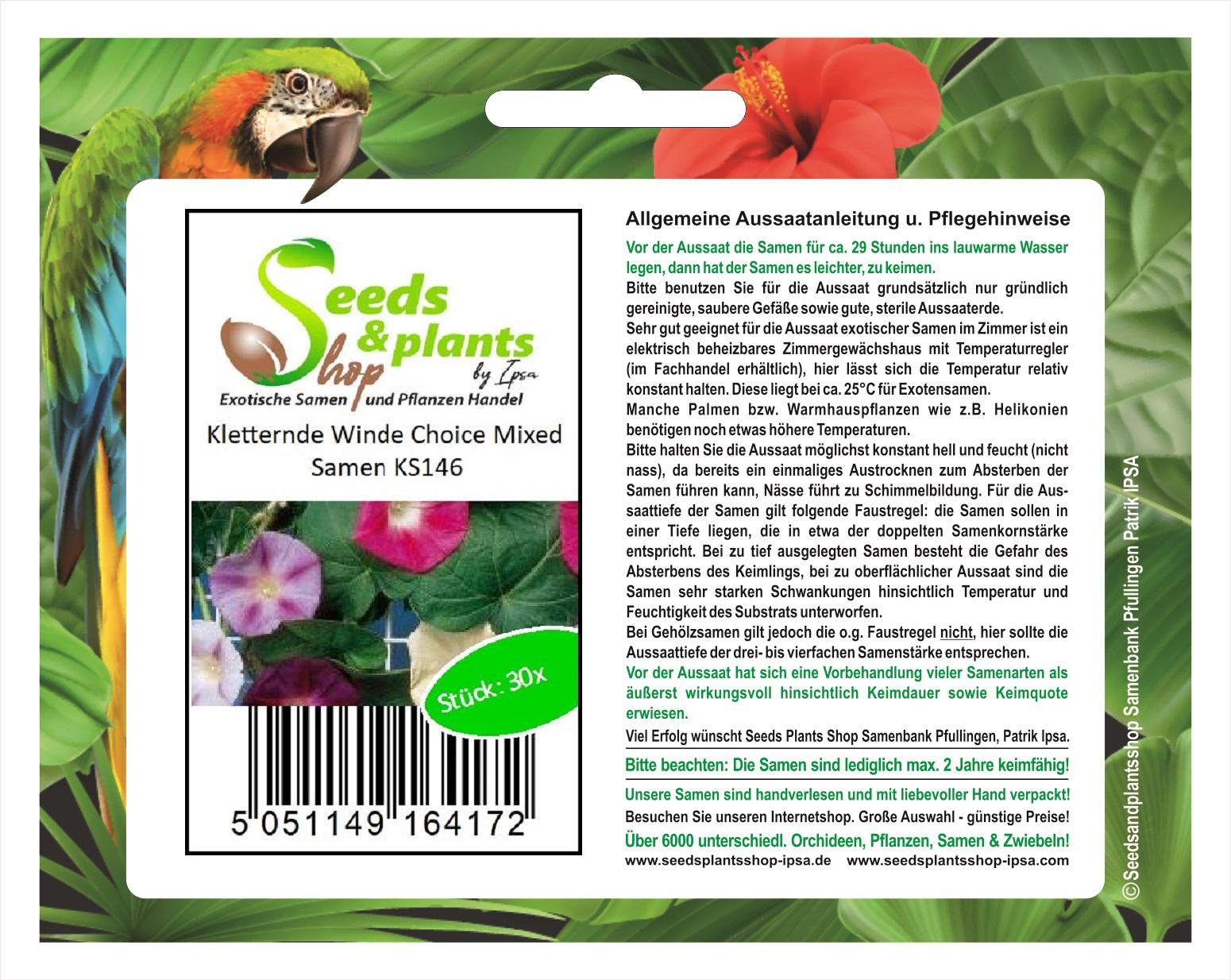 Garten Pflanzen Samen Zierpflanze Saatgut Rankpflanke FEDERWINDE