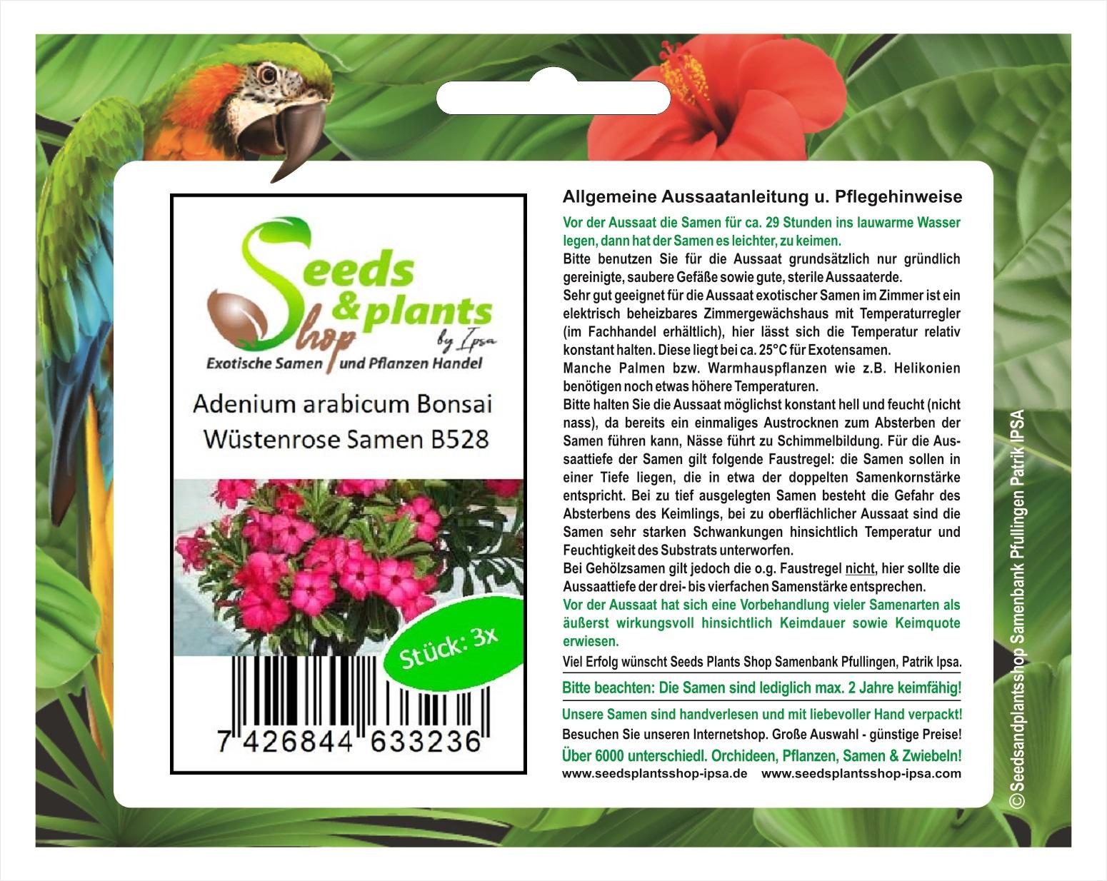 "5x Wüstenrose Blume Adenium /""PEONY/"" Bonsai Samen Hausgarten beste R2L1 Pfla G3H8"