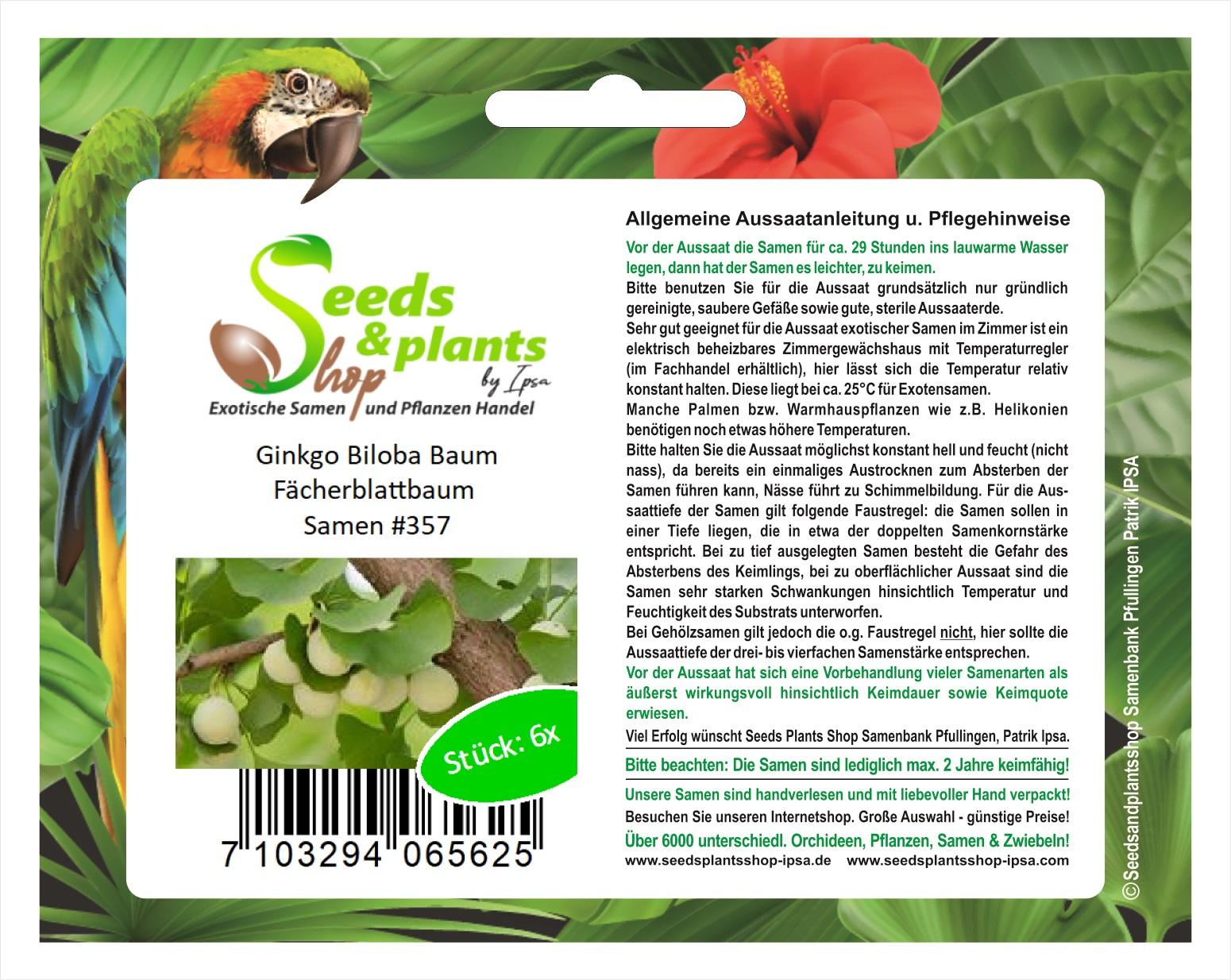 20 Stücke Erdnuss Gemüsesamen Zierpflanzen Grassamen GartenD