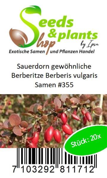 20x Sauerdorn Ordinaires L/'Épine-vinette Berberis Vulgaris Graines #355