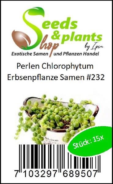 15x Perlen Chlorophytum Samen Erbsenpflanze Garten Haus Pflanze #232